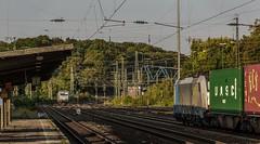 1615_2016_09_23_Köln_West_RHC_1285_116_Lz_Köln_Süd_Rpool_6186_101_bls_cargo_mit_Containerzug_Ehrenfeld (ruhrpott.sprinter) Tags: ruhrpott sprinter deutschland germany nrw ruhrgebiet gelsenkirchen lokomotive locomotives eisenbahn railroad zug train rail reisezug passenger güter cargo freight fret diesel ellok kölnwest als db mrcedispolok nxg nationalexpress lbl locon nrail pcw rhc sbbc siemens sncb vtgd es64p001 es64f4 0272 127 146 155 185 186 189 260 275 408 482 620 1261 1275 6127 6146 6189 2275 eurosprinter gravita dosto chemion schienen walzzeichen outdoor logo natur graffiti