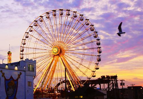 oc ferris wheel