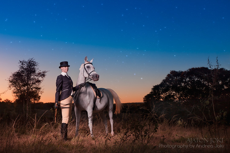 Arabian Horse stud farm sunset shoot in english riding habit