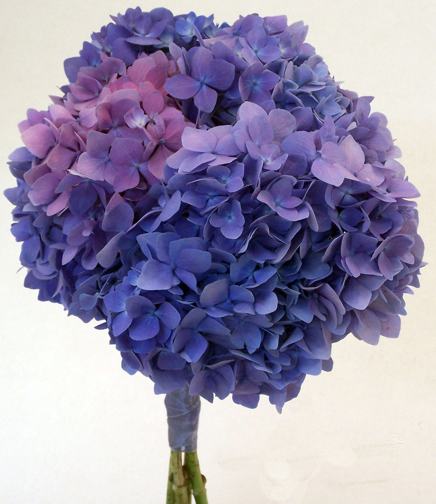 Sparks Florist Something Blue Bridal Bouquet