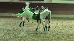 "Lipizzaner Dressage • <a style=""font-size:0.8em;"" href=""http://www.flickr.com/photos/64637277@N07/5890341221/"" target=""_blank"">View on Flickr</a>"