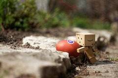 Phew....only one week left to hide all the eggs... (Gr@vity) Tags: easter danbo revoltech danboard
