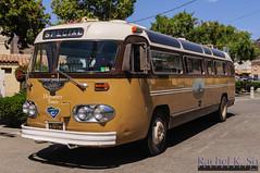 Flxible Bus (1950s) (InSapphoWeTrust) Tags: california usa bus losangeles unitedstates unitedstatesofamerica catalinaisland northamerica avalon motorcoach flxible santacatalinaisland