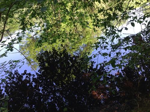 Belgium - Park Groenenberg