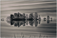 Cypresses at Dawn (B&W) (JMK/Photography) Tags: longexposure morning travel trees sunset bw reflection water beautiful sunrise landscape blackwhite nikon northcarolina cypress cypresses nationalwildliferefuge d600 70200f28 easterncarolina leefilter lakemattamuskeet bigstopper