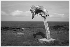 _DSC9107ed (alexcarnes) Tags: skiba geo birsay orkney alex carnes alexcarnes nikon d810 sigma 50mm f14 art whale bone skull rib 1610 blackandwhite monochrome