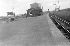 Moyasta Junction, County Clare (National Library of Ireland on The Commons) Tags: jamespodea odeaphotographiccollection nationallibraryofireland clare moyasta moyastajunction westclarerailway wcr munsterireland rails railway narrowgauge railwaystation junction watertower ireland countyclare areyerighttheremichael percyfrench sign maighsheasta