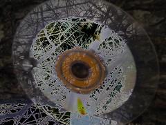 Solarized_CD (YAZMDG (15,000 images)) Tags: mobile desire negative solarized fone android posterized greyscale yaz htc yazminamicheledegaye yazmdg a8183 htcdesirea8183 hrcdesirea8183 ystudio