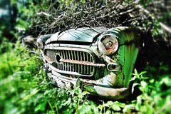 1953-1955 Fiat 1100-103 (Peter Bromley) Tags: auto green classic cars abandoned cemetery graveyard car forest woods nikon rust geocaching d70 fiat nikond70 sweden decay abandon bil geocache vehicle oldtimer rusting junkyard decaying biler camerashy 1100 bromley urbex youngtimer bilar båstnäs 1100tv meangreenmachine junkjard bastnas baastnaes gc1ehde