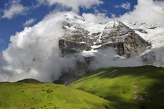 Eiger (pierre hanquin) Tags: mountains alps color nature colors berg alpes landscape geotagged schweiz switzerland nikon europa europe suisse pierre swiss getty helvetia svizzera paysage landschaft eiger wengen ch jungfrau montagnes berneroberland d90 1685 colorphotoaward oberlandbernois 1685mmf3556gvr magicunicornverybest magicunicornmasterpiece fleursetpaysages ayrphotoscontestwildsilent hanquin