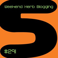 Hosting Weekend Herb Blogging #291