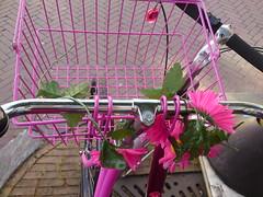 flowery bike 52 (trientjedartel) Tags: flowers bike bloemen fiets roze flowery fleurig kleurig
