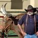 Ft. Worth Cowboy