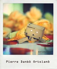 Pierre Danbò Ortolanò. (Maria Dattola) Tags: copyright food canon eos © 85mm cucina orto danbo 2011 fioridizucca revoltech danboard 1000d mariadattola