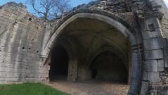 Roche Abbey 1 (stupiduglyfool) Tags: architecture cistercian southyorkshire rocheabbey