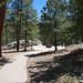 Whitetail Campground #12