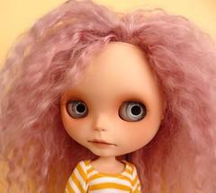 Tammy's Lilly