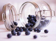 blueberries ~ 26/365 (Sarah Messina) Tags: friends newyork paris milan love ikea cup glass fashion project hands hand nail moda mani sexandthecity gucci blueberry vogue nails 365 carrie dedicated prada chanel avril mccartney hold blueberries valentino vetro lavigne bradshaw dolcegabbana ipad unghie mirtillo barattolo mirtilli keepholdingon 365project