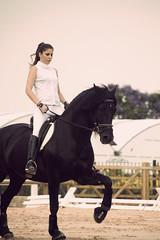 sesin moda (Eva Nogueira) Tags: canon caballos moda hpica 550d