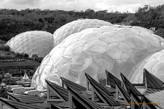 [2013-03-20@15.40.10a] (Untempered Photography) Tags: roof monochrome solar energy cornwall mediterranean edenproject dome panels canonef50mmf14 humidtropicsbiome warmtemperatebiome project365 untemperedeye canoneos5dmkiii untemperedeyephotography