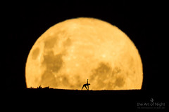 Yoga By The Honey Moon (markg<<) Tags: newzealand people moon yoga pose photography honeymoon silhouettes fullmoon moonrise wellington markgee canon14xextender canonef600mmf4 theartofnight