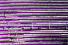 lila stands (loop_oh) Tags: bergiselsprungschanzestadion fis fisskijumpingworldcup fourhillstournament sprungschanze worldcup zahahadid alps austria bergiselschanze hill inn innsbruck oesterreich schanze skijumping skijumpinghill stadion tirol sterreich stand stands audience observer viewer spectator bystander onlooker viewership terraces section seats rail rails stair stairs
