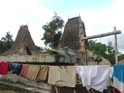 Sumba ouest-Waikabukak-Praiijing-village (26)