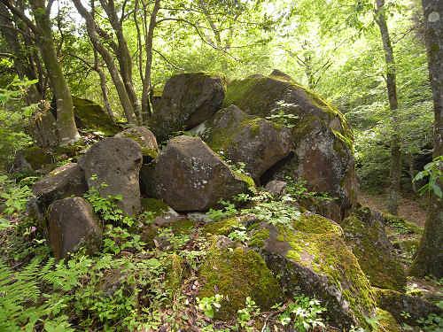 神野山の石文化@山添村-19