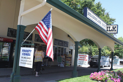 PAM_4768-Meadowlark-Dairy-Pleasanton-ice-cream-cones