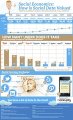 backupify-social-data-infographic