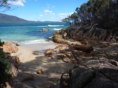 Bay (Michael from Mountains) Tags: sea horse beach bay scenic australia tasmania hazards pamelaanderson secluded freycinet colesbay