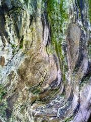 Slate Deposits, Loch Linnhe