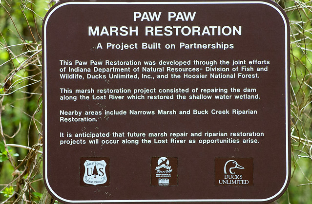 Hoosier National Forest - Paw Paw Marsh - April 24, 2015