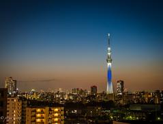 Tokyo Skytree and Cityscape (PoojaTiwari) Tags: