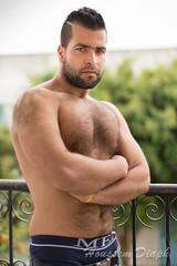 Arab muscle bear