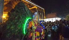HL8A9324 (deepchi1) Tags: india festivals peacock kerala kavadi kavadifestival