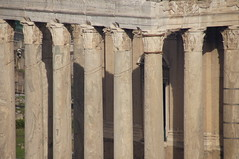 Columns (Jungle_Boy) Tags: rome italy roma travel 2016 europe westerneurope eternalcity caputmundi romanforum fororomano ruins romanempire ancientrome