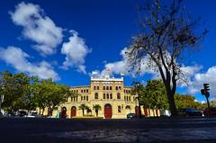 287 - 366 Plaza de Toros (CarlosPuerto) Tags: plaza de toros
