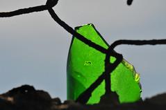 Die Scherbe (TitusT1960) Tags: zaun scherbe glas makro art kunst