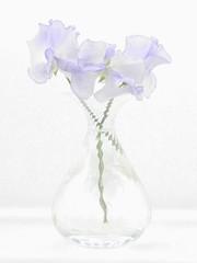 Blue cloud (annies pix) Tags: sweet pea percy thrower blue vase