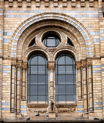 Window, Natural History Museum (shadow_in_the_water) Tags: gradeilisted 187381 alfredwaterhouse columns capitals romanesquestyle window ventana fentre fish victorianarchitecture naturalhistorymuseum cromwellroad south kensington london sw7 wolf