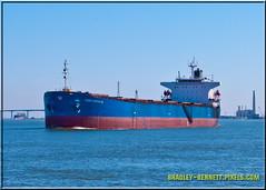 Nord Neptune_1502 LR (bradleybennett) Tags: cargo vessel ship shipping delta water river ocean tanker antioch port stockton nord neptune