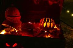 (theleakybrain) Tags: pumpkin nights mnstatefair p1460159 pumpkinnights halloween halloweenwalk minnesota jackolantern jack lantern
