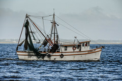 Dora F (Amanda L Brewer) Tags: jekyllislandvacation2016 amandalbrewer atlantic ga jekyllislandga fishingpier shrimp doraf shrimpboat shrimping boat ocean outdoor