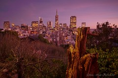 Coit Tower - 101916 - 02 - View of Financial District (Stan-the-Rocker) Tags: stantherocker sony ilce sanfrancisco coittower telegraphhill northbeach sel16f28 financialdistrict