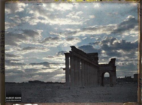 Syrie, Palmyre, Vue sur le portique Central au jour naissant