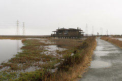 Leaving the Baylands (UnsignedZero) Tags: california item landscapes landscaping object out outdoor outdoors outside outsides paloalto paloaltobaylands rainy water weather
