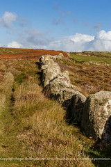 Ancient Boudary Wall (doublejeopardy) Tags: stone path boundary wall cornwall footpath landsend england unitedkingdom gb