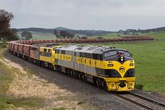 2016-10-30 S317-GM27-GM10-S302 Wimbledon 8878 (deanoj305) Tags: newbridge newsouthwales australia au ssr southern shorthaul railroad 8878 coal wagon transfer hopper nhkf s317 gm27 gm10 s302 main west line nsw