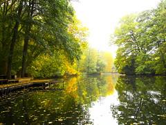 161027-0190 _Tiergart_SOOC3_ (Pixel-Cat) Tags: herbst autumn autumncolors herbstlaub herbstfarben stadtpark citypark wald forest water wasser berlin tierpark olympus omd em5 sooc mzuiko1250mm13563iiez